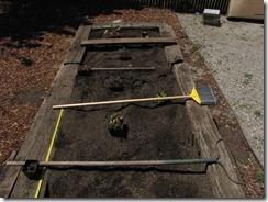 Garden_Week 1_Planning