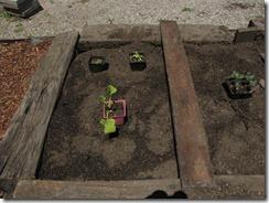 Garden_Week_One_Planning2