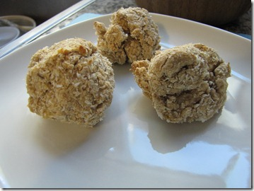 Vanilla_Macaroons_Protein_Powder_recovery_snack