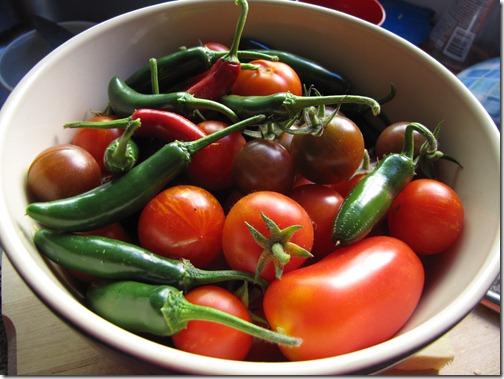 cherry_tomato_serrano_pepper_san_marzano2