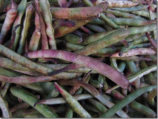 fresh_beans_farmers_market