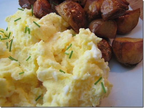 scrambled_eggs_closeup