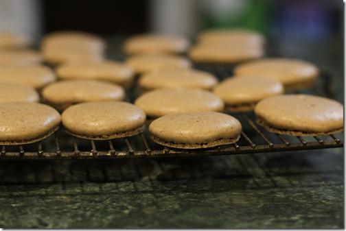 chocolate_cloud_cookies_wire_rack_FG
